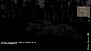 a dark forest scene